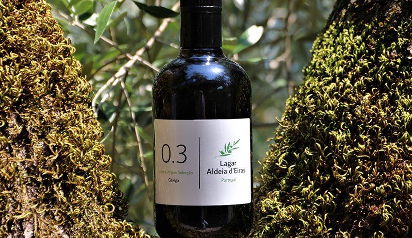 Neues Olivenöl aus Portugal